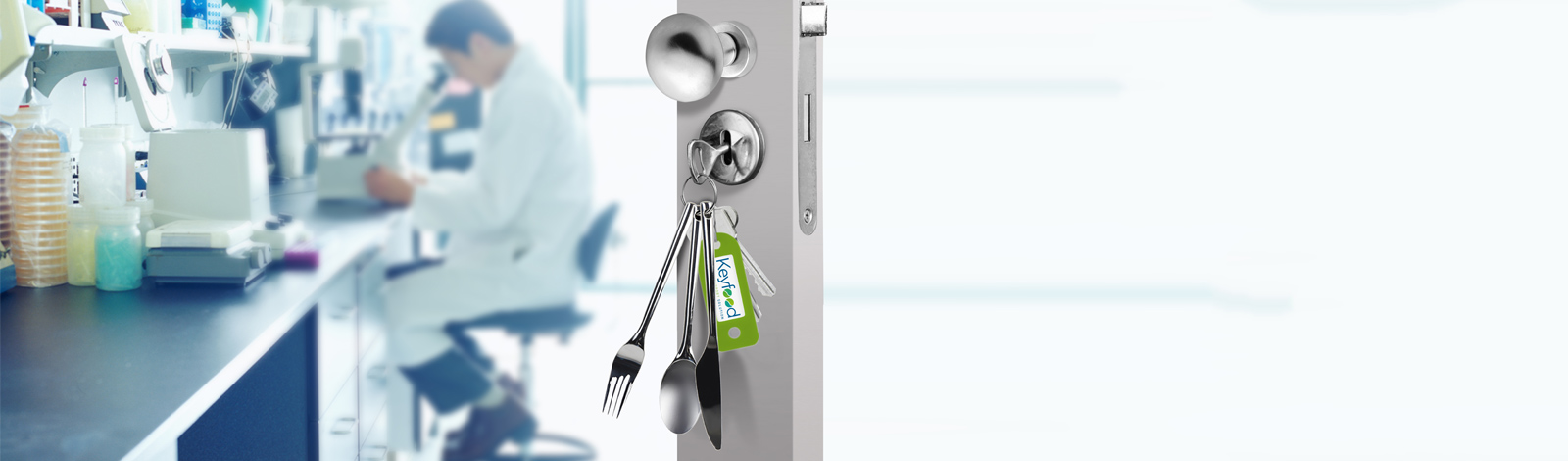 keyfood-suite